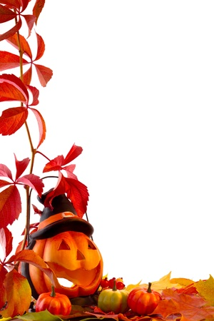 Fall leaves with pumpkin on white background photo