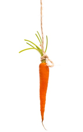 carrot dangling on a string isolated on white background 스톡 콘텐츠