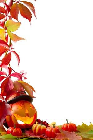 citrouille: Chute des feuilles avec de la citrouille sur fond blanc Banque d'images