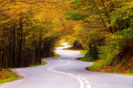 road surface: Winding road during the autumn season  Stock Photo