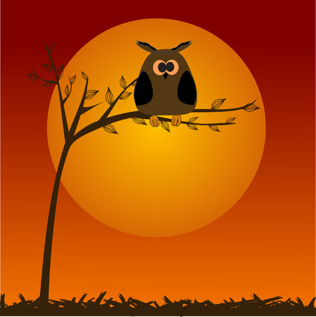 The full moon and owl. Stock Vector - 6343817