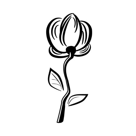 Hand drawn flower isolated on white. Vector