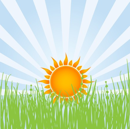 Summer landscape.  illustration. Stock Vector - 7706988