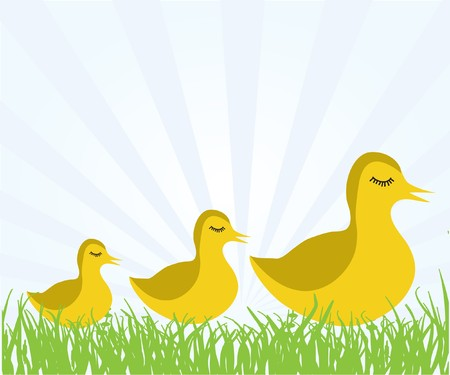 Ducks family on the grass.  Vector
