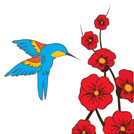 symbiotic: Humming bird and flowers.