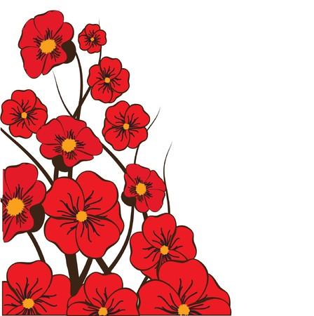 beautiful red hibiscus flower: Tarjeta floral con hibiscus  Vectores