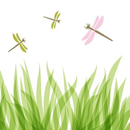 marsh plant: Libellula Vettoriali