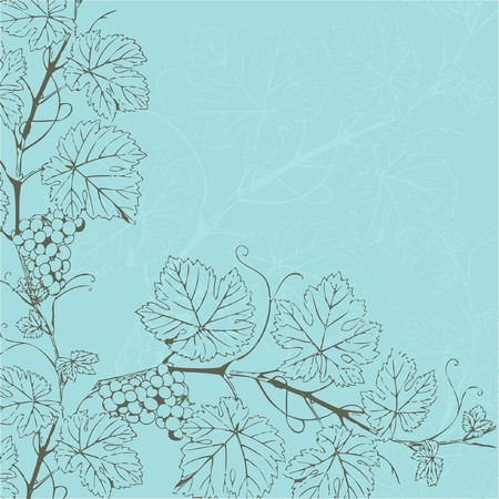 etching: Vintage background with grape branch
