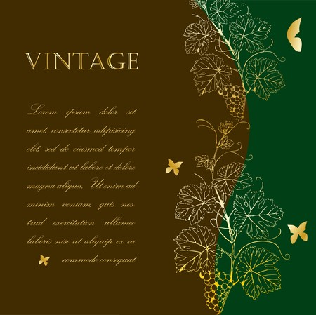 Vintage background with grape branch  Vector