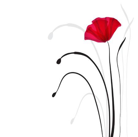 wild flowers: Kaart met papavers  Stock Illustratie