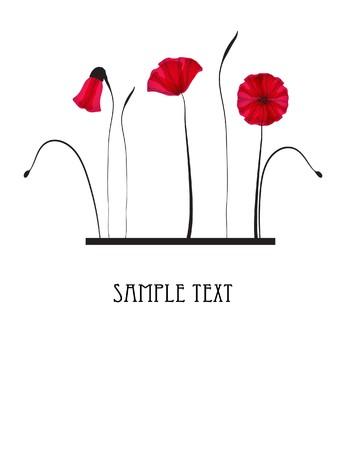 мак: Красные цветы мака Иллюстрация