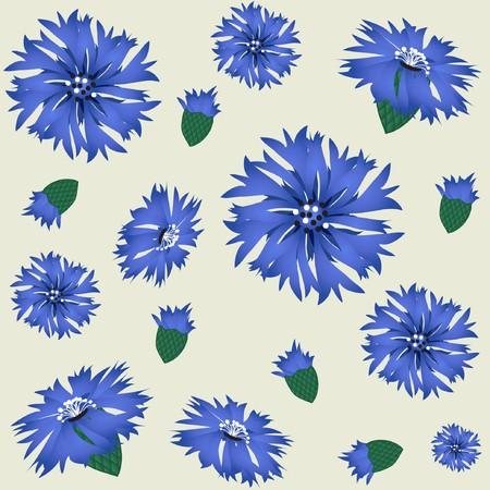cornflowers: Cornflowers  Illustration