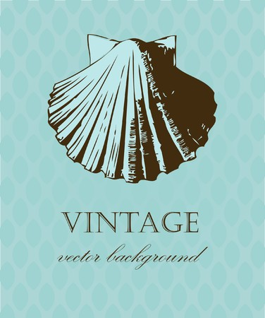 wallpaperrn: Vintage card with hand drawn shell