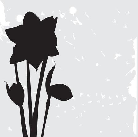 Vintage floral card  photo