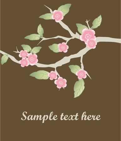 Sakura branch.  Stock Photo - 7838981