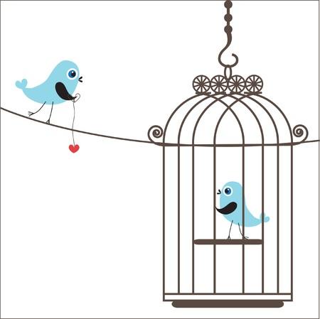 serenata: Pareja de aves en el amor.