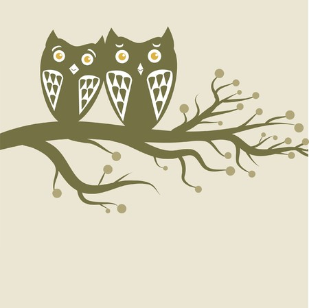 Owls couple on the tree photo
