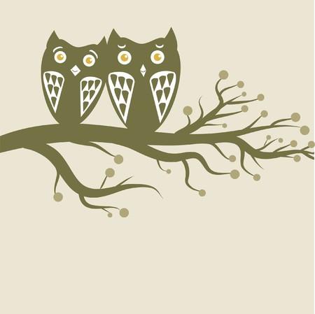 Owls couple on the tree photo