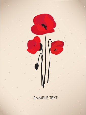 Poppy flowers. Design for greeting card photo