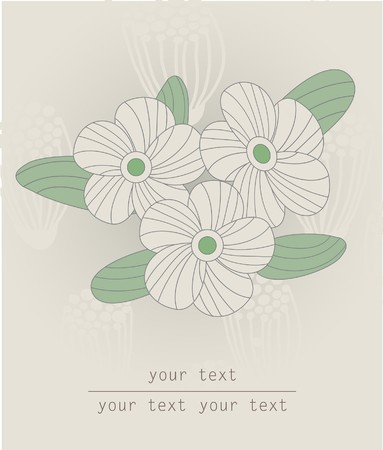whitern: Floral card