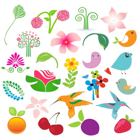 Big elements set. Birds, fruits and flowers for your design  Stock Photo - 8195366