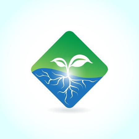 根と葉します。生態学的な記号  イラスト・ベクター素材