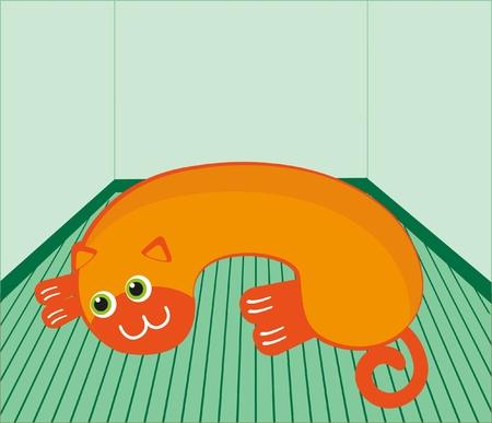 Orange cat on the floor  Vector