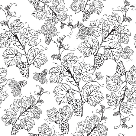 Vintage seamless pattern with grape branch  Vector