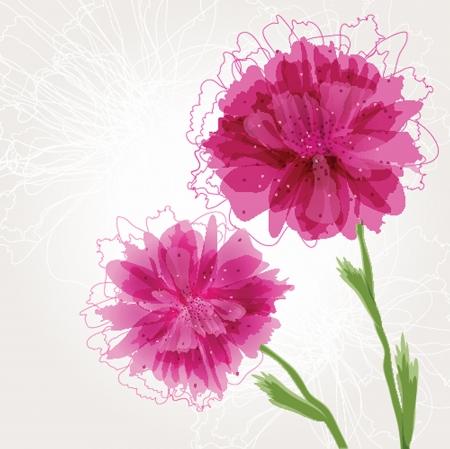 Peony bloem Vector Illustratie