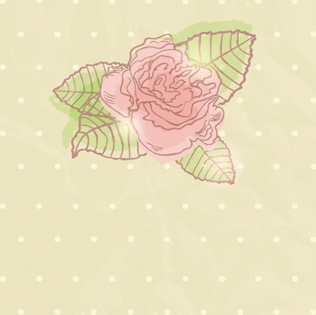Abstract rose flower  illustration illustration