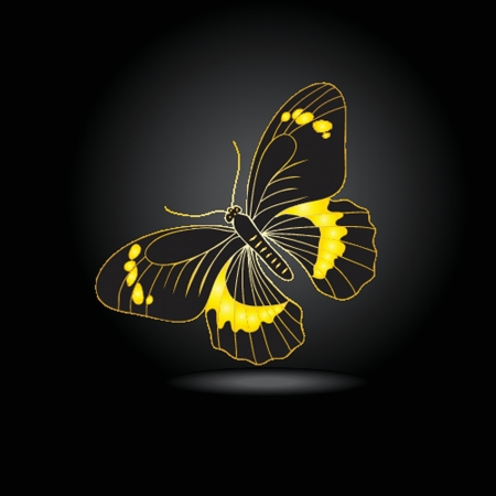 Beautiful fairy gold butterfly with shadow photo