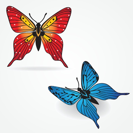 Various  butterflies on  background Vector