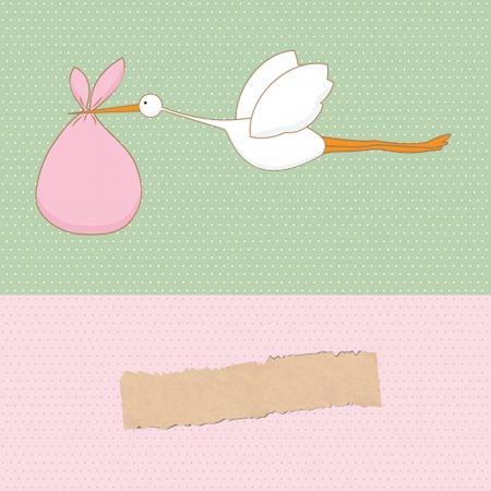 brings: Baby arrival card with stork that brings a cute girl Illustration