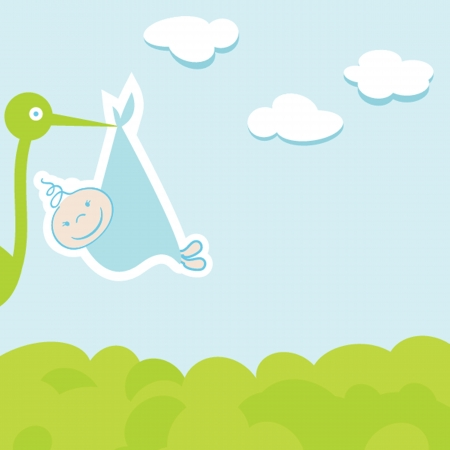 baby boy announcement card  illustration Vector