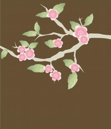 Blossom cherry - Greeting Card Vector