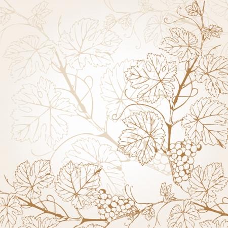 Vintage illustration with grape branch