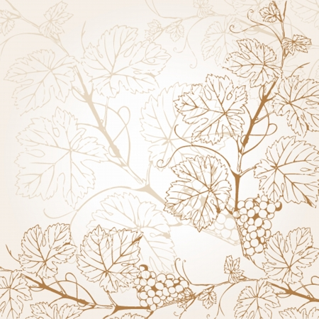 grapevine: Vintage illustration with grape branch