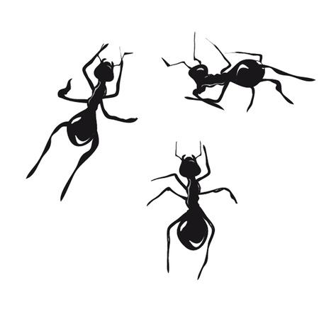 frizz: Ants. Vector. Stock Photo