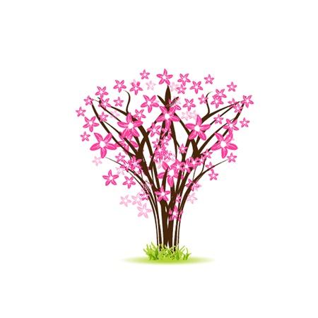 Blossom cherry - Greeting Card Illustration