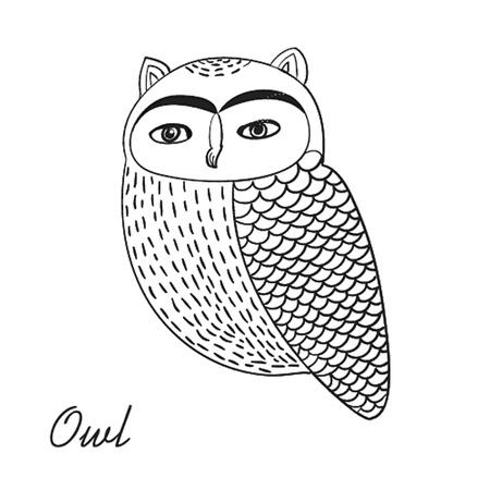 Cute hand drawn owl bird illustration Vector