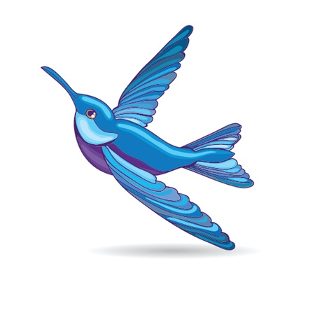 Blue hummingbird, vector illustration Vector