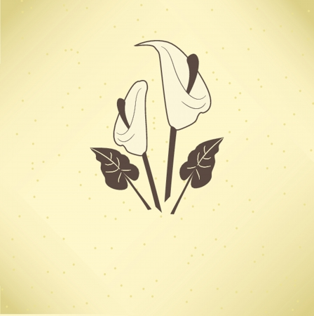 with sympathy: Vector illustration of calla lilies