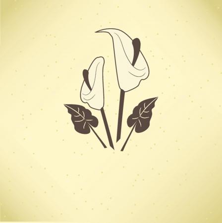 burial: Vector illustration of calla lilies