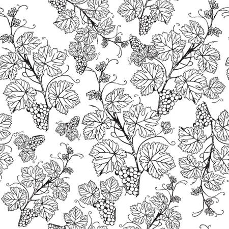 Grape seamless pattern Imagens - 21201354