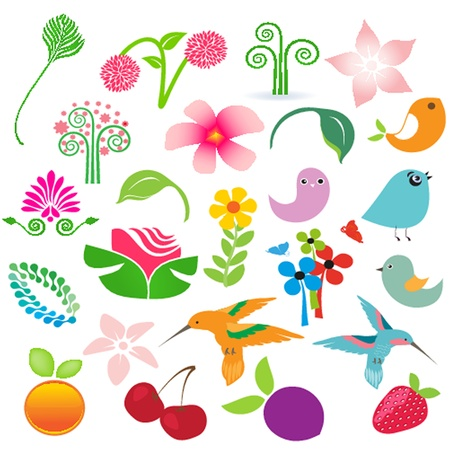 Big set of nature elements isolated over white. Birds, fruits and flowers for your design Vector