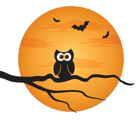 moon  owl  silhouette:  Halloween background
