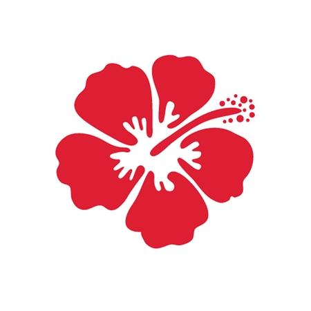 ハイビスカスの花のベクトル イラスト