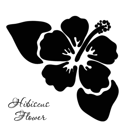 Vector illustration of hibiscus flower illustration