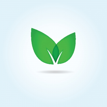 Vector illustration of green leaves. Eco concept illustration
