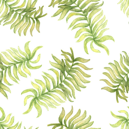 philodendron: Watercolor  seamless pattern with palm tree leaf. Vector illustration  for design of gift packs, wrap,  patterns fabric, wallpaper, web sites and other. Illustration